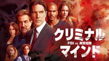 クリミナル・マインド/FBI vs. 異常犯罪 シーズン01 のサムネイル画像