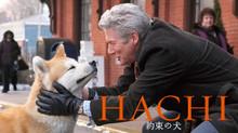 HACHI 約束の犬 のサムネイル画像