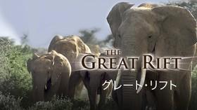 グレート・リフト 〜アフリカの鼓動〜 のサムネイル画像