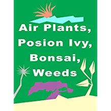 AIR PLANTS, POISON IVY, BONSAI, WEEDS のサムネイル画像