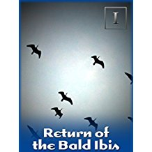 RETURN OF THE BALD IBIS のサムネイル画像