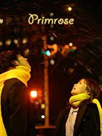 PRIMROSE のサムネイル画像