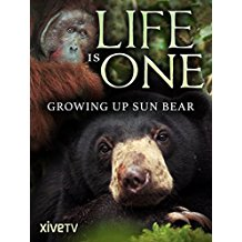 Life is One: Growing Up Sun Bear のサムネイル画像