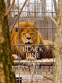 BLACK PINE のサムネイル画像