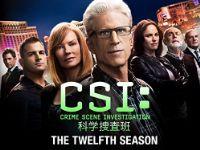 CSI:科学捜査班 シーズン12 のサムネイル画像