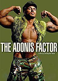 THE ADONIS FACTOR のサムネイル画像