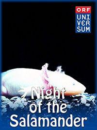 Night of the Salamander のサムネイル画像