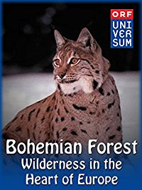BOHEMIAN FOREST - WILDERNESS IN THE HEART OF EUROPE のサムネイル画像