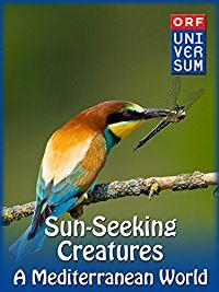 Sun-Seeking Creatures - A Mediterranean World のサムネイル画像
