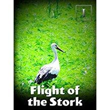 FLIGHT OF THE STORK のサムネイル画像