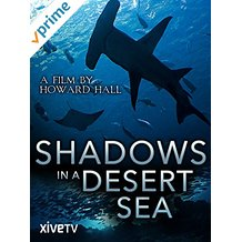 Shadows in a Desert Sea: A Film by Howard Hall のサムネイル画像
