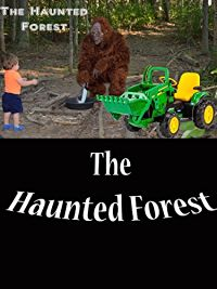 LITTLE HEROES- THE HAUNTED FOREST WITH BIG FOOT AND LITTLE HEROES のサムネイル画像
