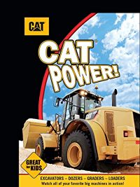 CAT POWER のサムネイル画像