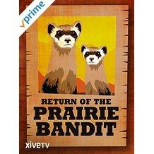 RETURN OF THE PRAIRIE BANDIT のサムネイル画像