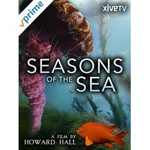 SEASONS OF THE SEA: A FILM BY HOWARD HALL のサムネイル画像