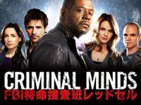 クリミナル・マインド/FBI 特命捜査班レッドセル のサムネイル画像