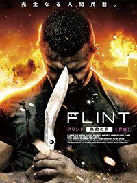 FLINT 〜フリント 無敵の男〜 前編 のサムネイル画像