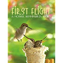 FIRST FLIGHT: A MOTHER HUMMINGBIRD'S STORY のサムネイル画像