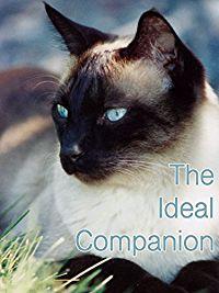 THE IDEAL COMPANION のサムネイル画像