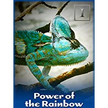 POWER OF THE RAINBOW のサムネイル画像
