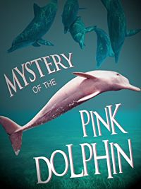 MYSTERY OF THE PINK DOLPHIN のサムネイル画像