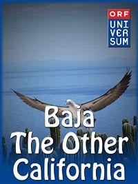 BAJA - THE OTHER CALIFORNIA のサムネイル画像