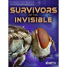 SURVIVORS OF THE INVISIBLE のサムネイル画像