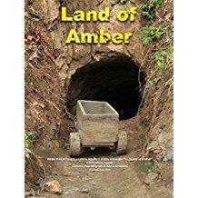 Land of Amber のサムネイル画像