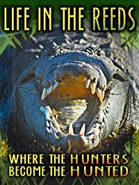 LIFE IN THE REEDS: WHERE THE HUNTERS BECOME THE HUNTED のサムネイル画像