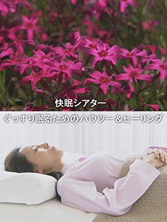 快眠シアター ぐっすり眠るためのハウツー&ヒーリング のサムネイル画像