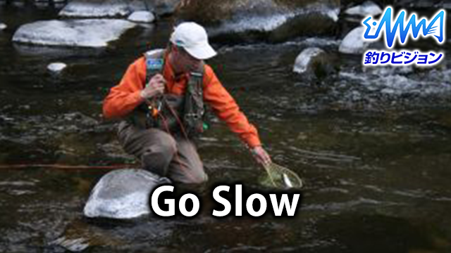 GO SLOW のサムネイル画像