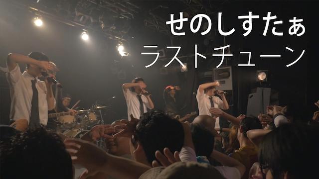 【LIVE】ラストチューン/せのしすたぁ のサムネイル画像