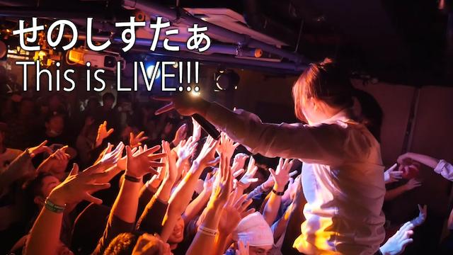 【MV】 THIS IS LIVE!!!/せのしすたぁ のサムネイル画像
