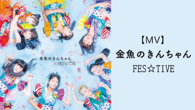 【MV】 金魚のきんちゃん/FES TIVE のサムネイル画像