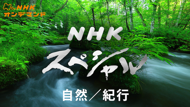 Nスペ 自然/紀行 のサムネイル画像