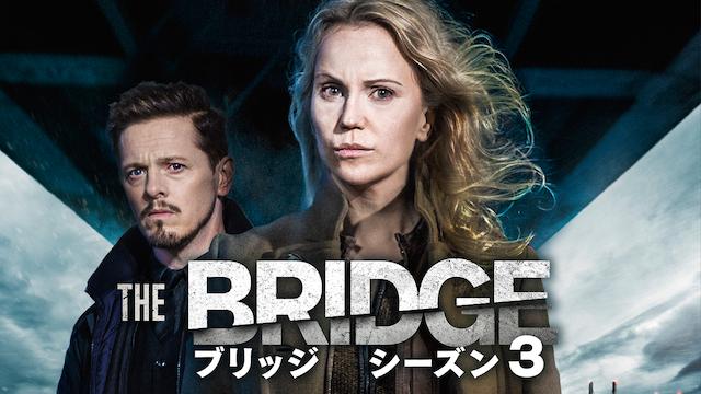 THE BRIDGE/ブリッジ シーズン3 のサムネイル画像