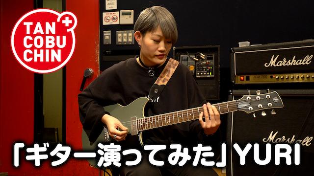 たんこぶちん「ギター演ってみた」/YURI のサムネイル画像