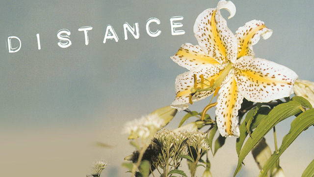 DISTANCE のサムネイル画像