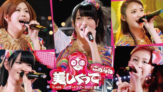 ℃-ute コンサートツアー2012春夏〜美しくってごめんね〜 のサムネイル画像
