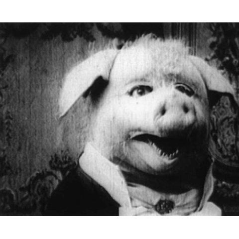 20世紀初頭の珍品映画&ドキュメンタリー のサムネイル画像