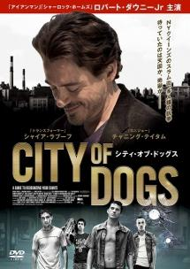 CITY OF DOGS のサムネイル画像