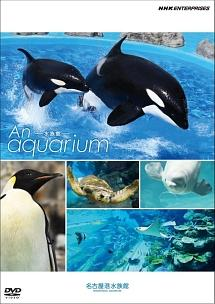 An Aquarium -水族館 - 名古屋港水族館 のサムネイル画像