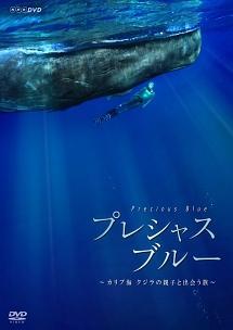プレシャス・ブルー カリブ海・クジラの親子と出会う旅 のサムネイル画像