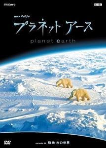 プラネットアース Episode.08 「極地 氷の世界」 のサムネイル画像