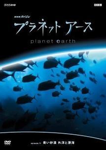プラネットアース Episode.11 「青い砂漠 外洋と深海」 のサムネイル画像