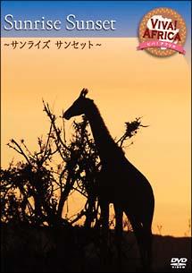 ビバ!アフリカ 2「サンライズ サンセット」 のサムネイル画像