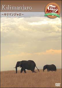 ビバ!アフリカ 5「キリマンジャロ」 のサムネイル画像