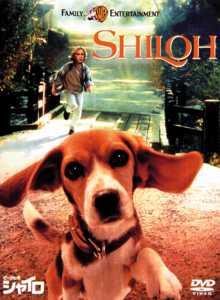 ビーグル犬シャイロ のサムネイル画像