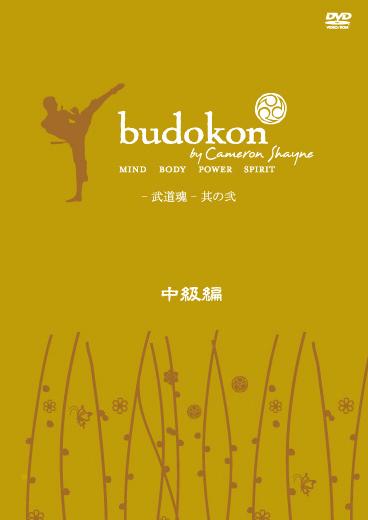 budokon -武道魂 - 中級編 2 のサムネイル画像