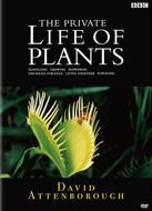 BBC 植物の世界 1 旅をする植物 のサムネイル画像